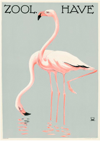 Flamingoer